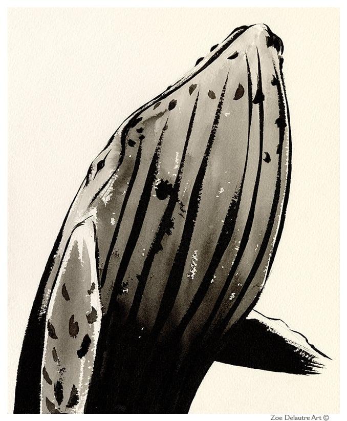 Image of Humpback Whale Memento Mori