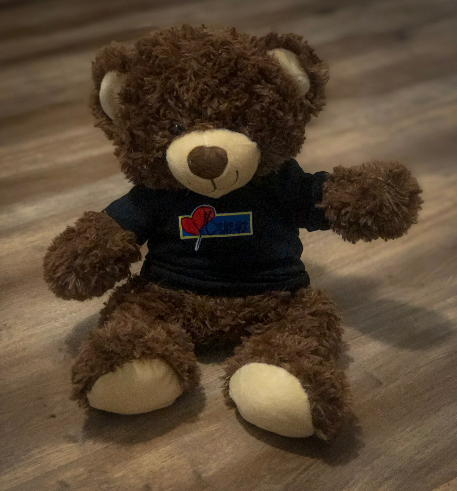Image of iHYS BEAR