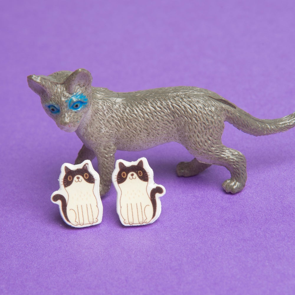 Image of Tiny Resin Cat Earrings