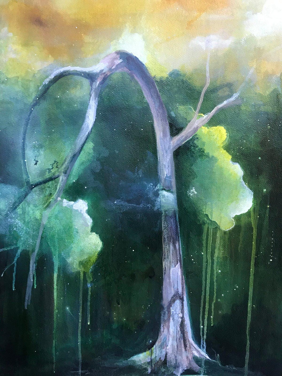 Image of Weepy Tree