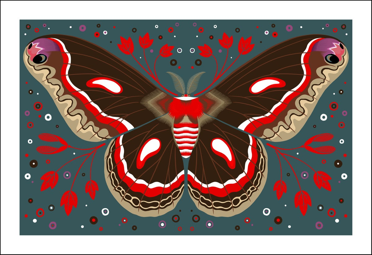 Image of Cecropia Moth Print
