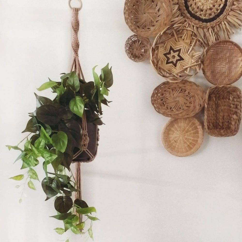 Image of Spiral Plant Hanger