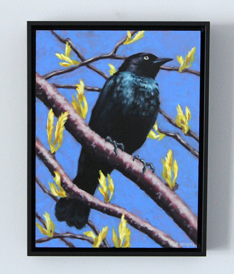 """Image of """"Brewer's Blackbird"""" Oil Painting"""