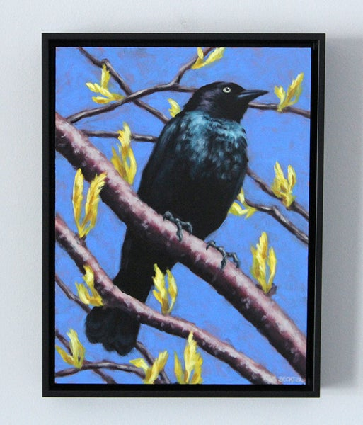"Image of ""Brewer's Blackbird"" Oil Painting"