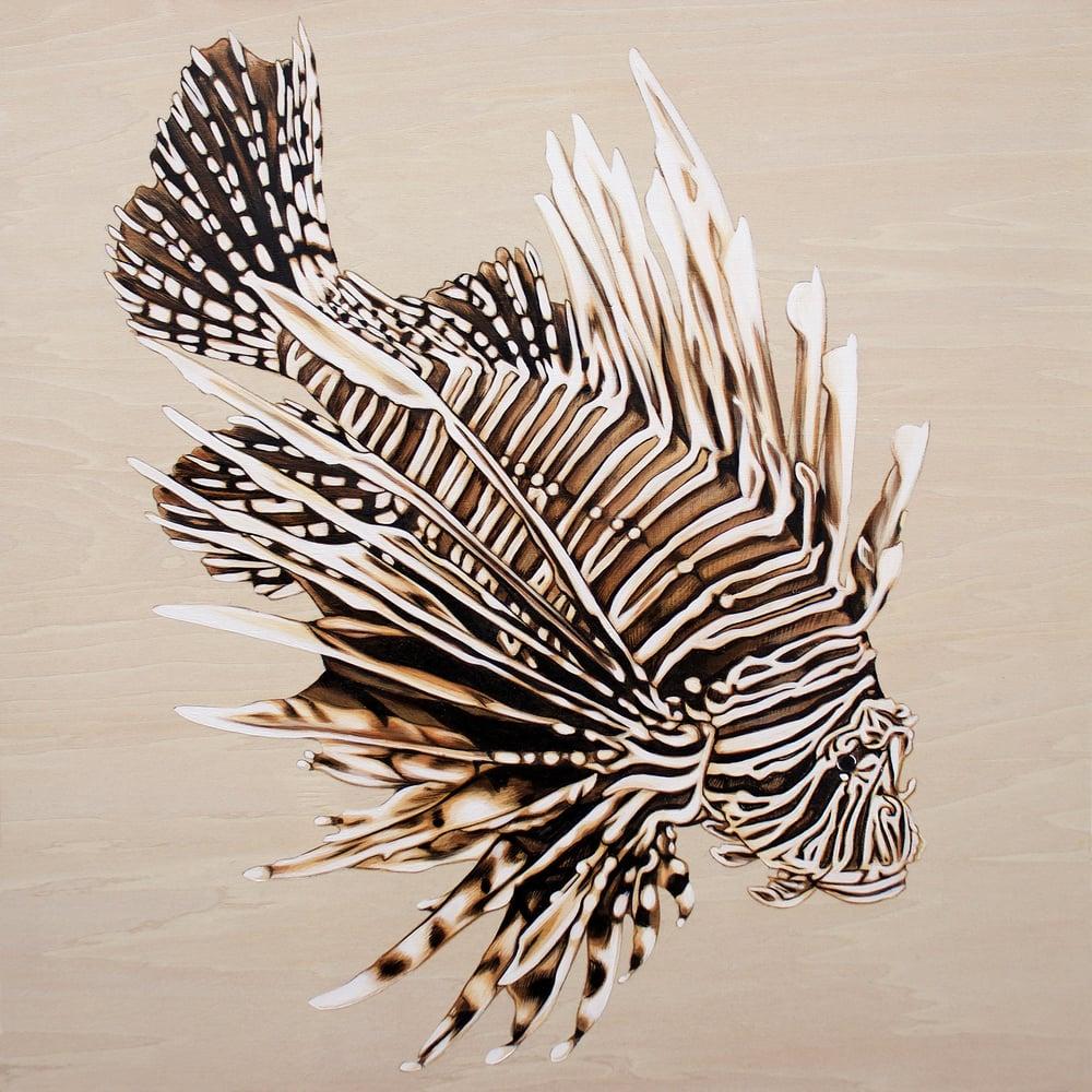 Image of Lionfish