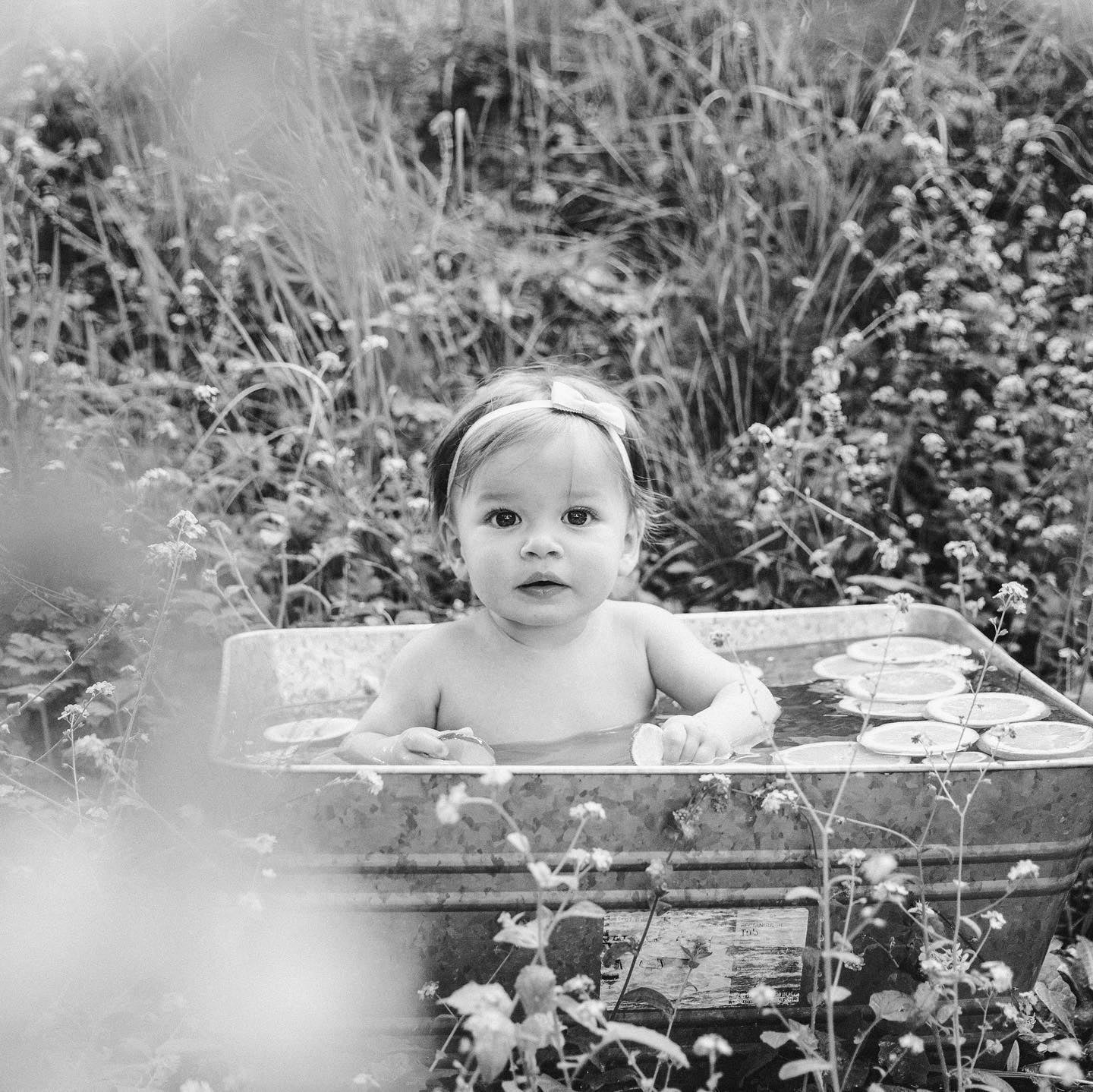Image of August Baby Fruit n' Flower Bath Mini Session | Retainer