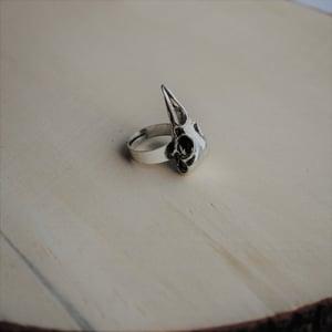 Image of Raven ring