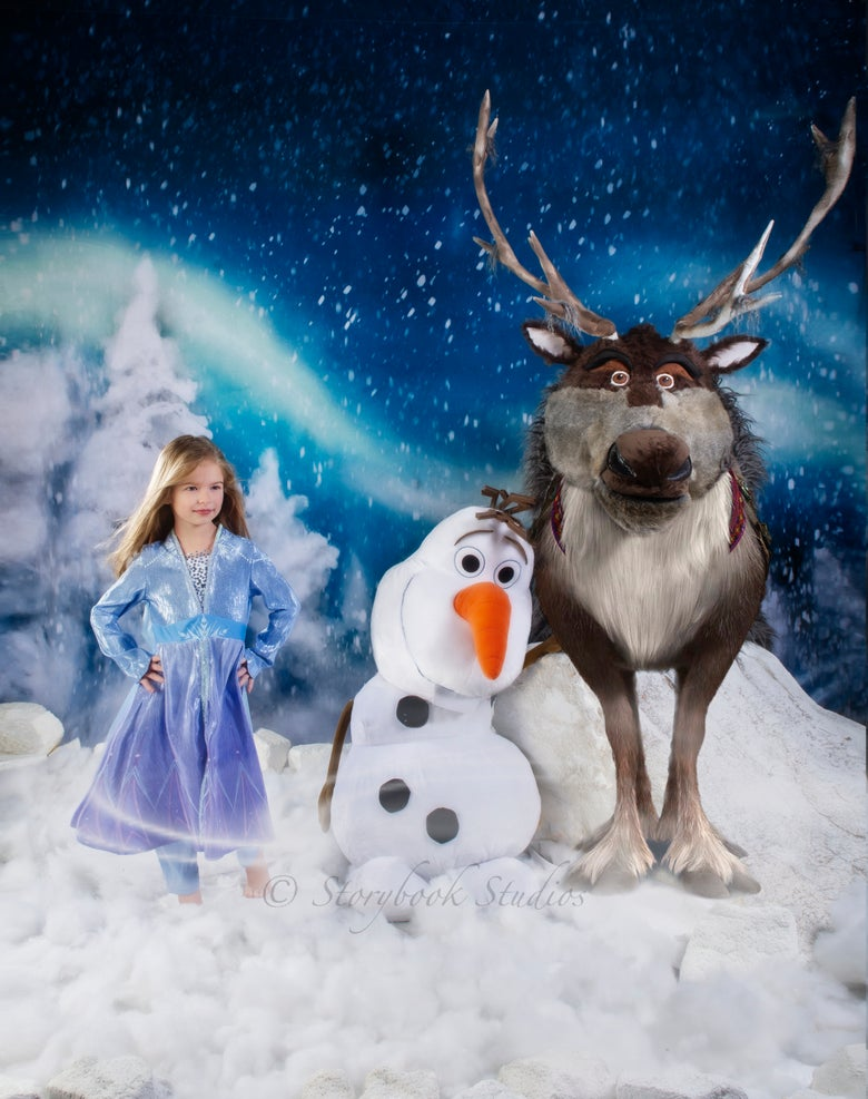 Image of 'FROZEN' THEMED PORTRAITS
