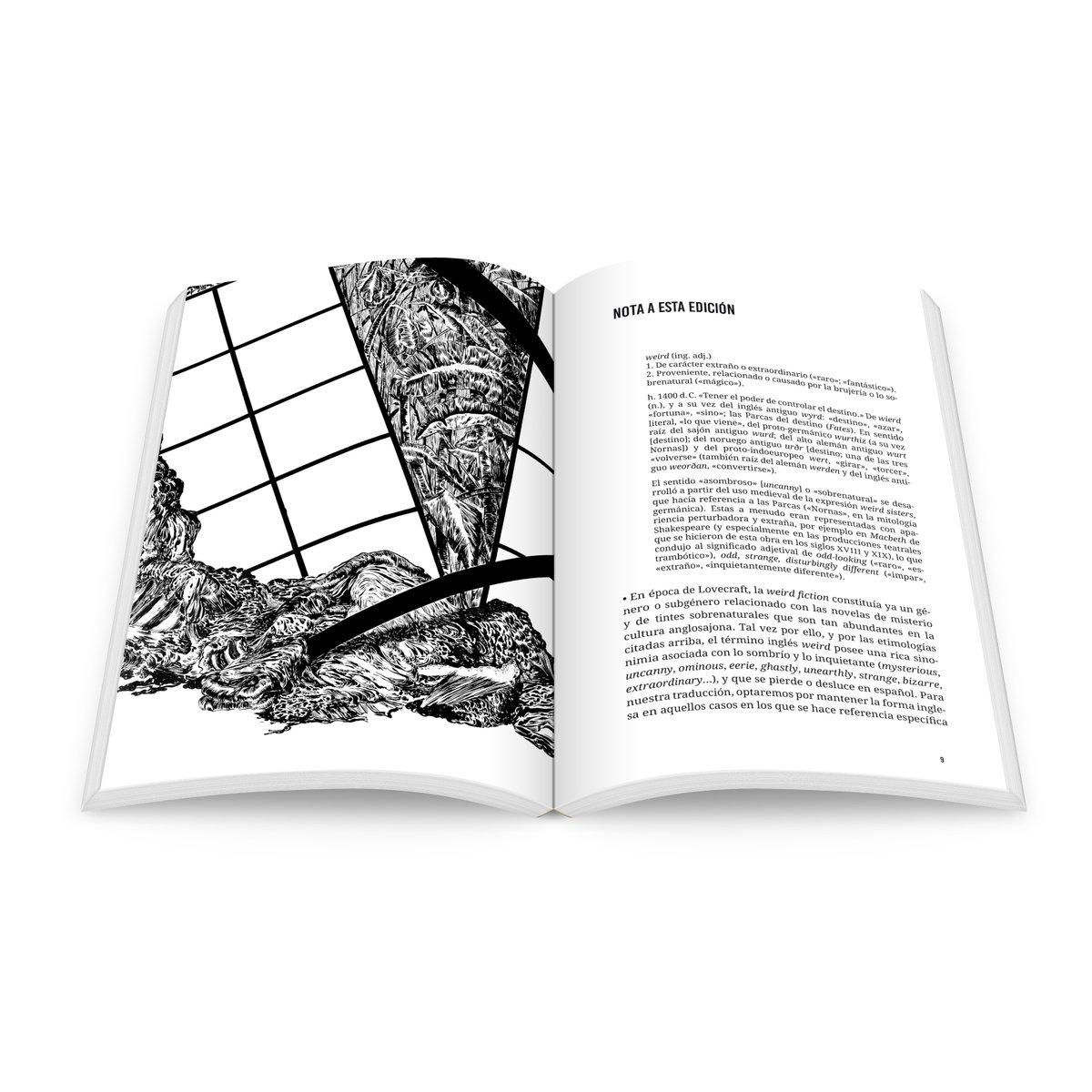 Image of Realismo raro: Lovecraft y la filosofía / Holobionte Ediciones
