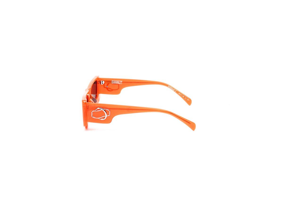 Image of Animal 1-orange