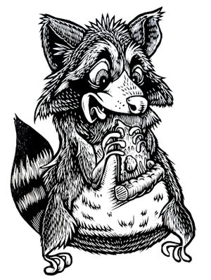 Image of Raccoon eating Pizza T-shirt **FREE SHIPPING**