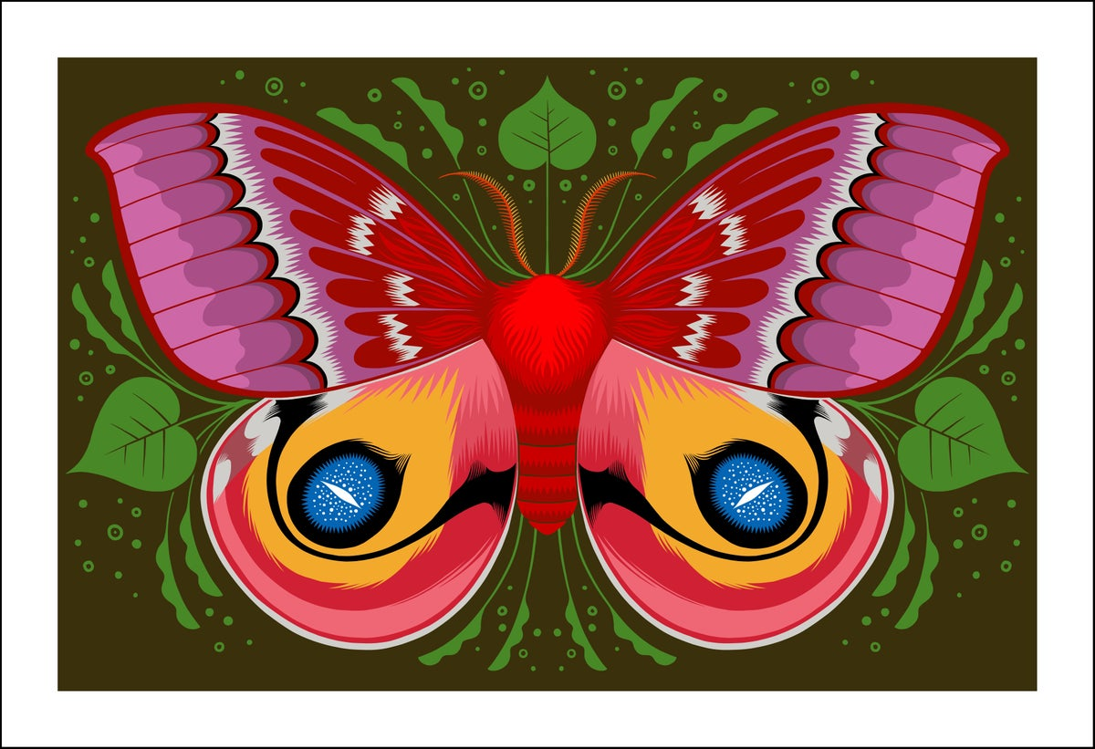 Image of Io Moth Print