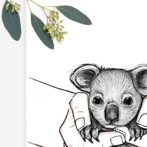 Image of Koala In Safe Hands