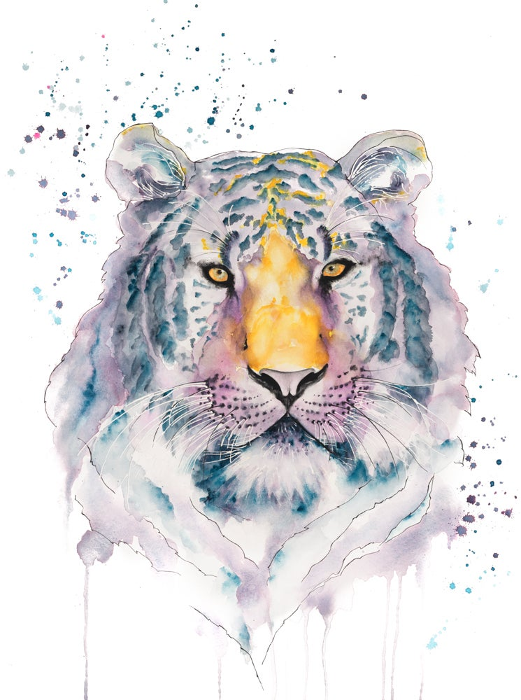 Image of Tiger - WWF Wildlife Collection