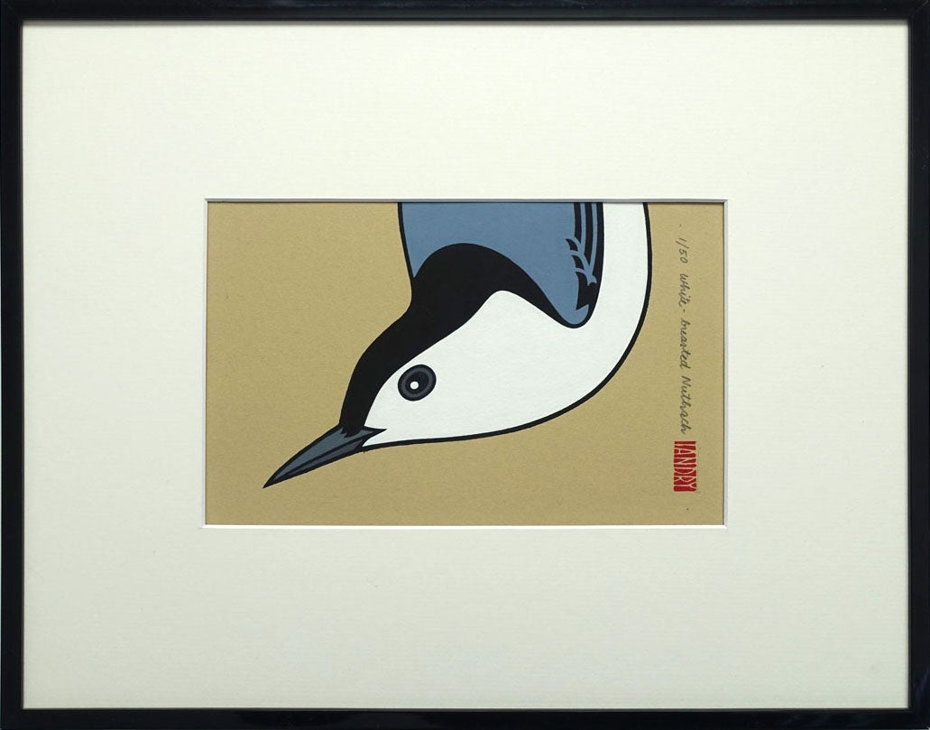 Image of White-Breasted Nuthatch