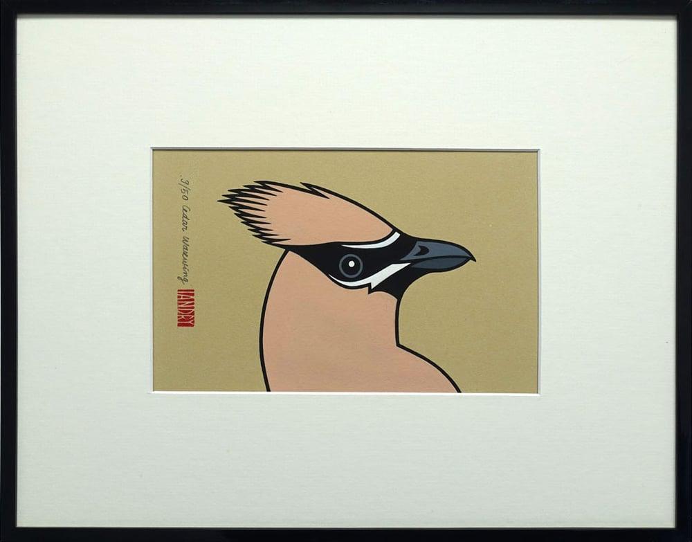 Image of Cedar Waxwing