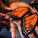 Image 3 of Monarch Butterfly earrings