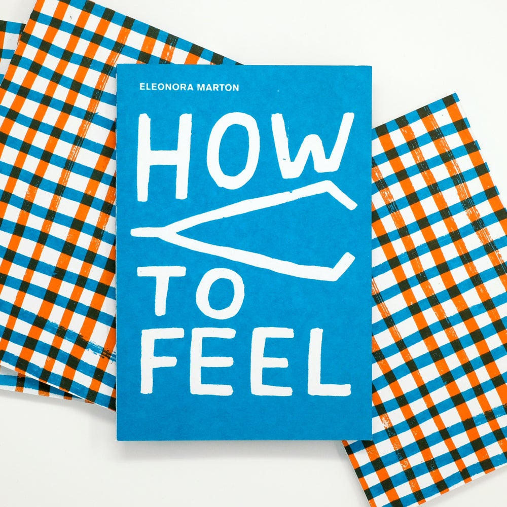 Image of How to Feel