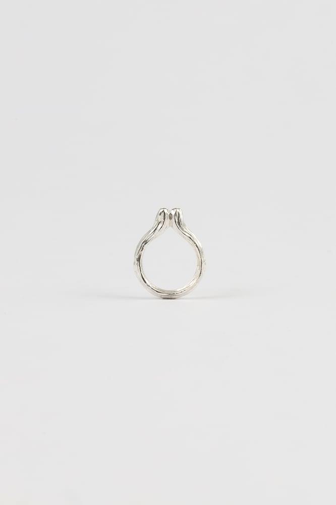 Image of cereus ring