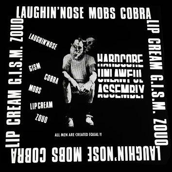 "Image of v/a - ""Hardcore Unlawful Assembly"" Lp"