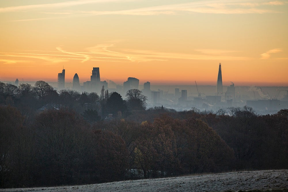 Image of Frosty Dawn on Hampstead Heath