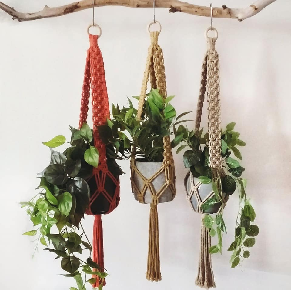 Image of Ivy Plant Hanger
