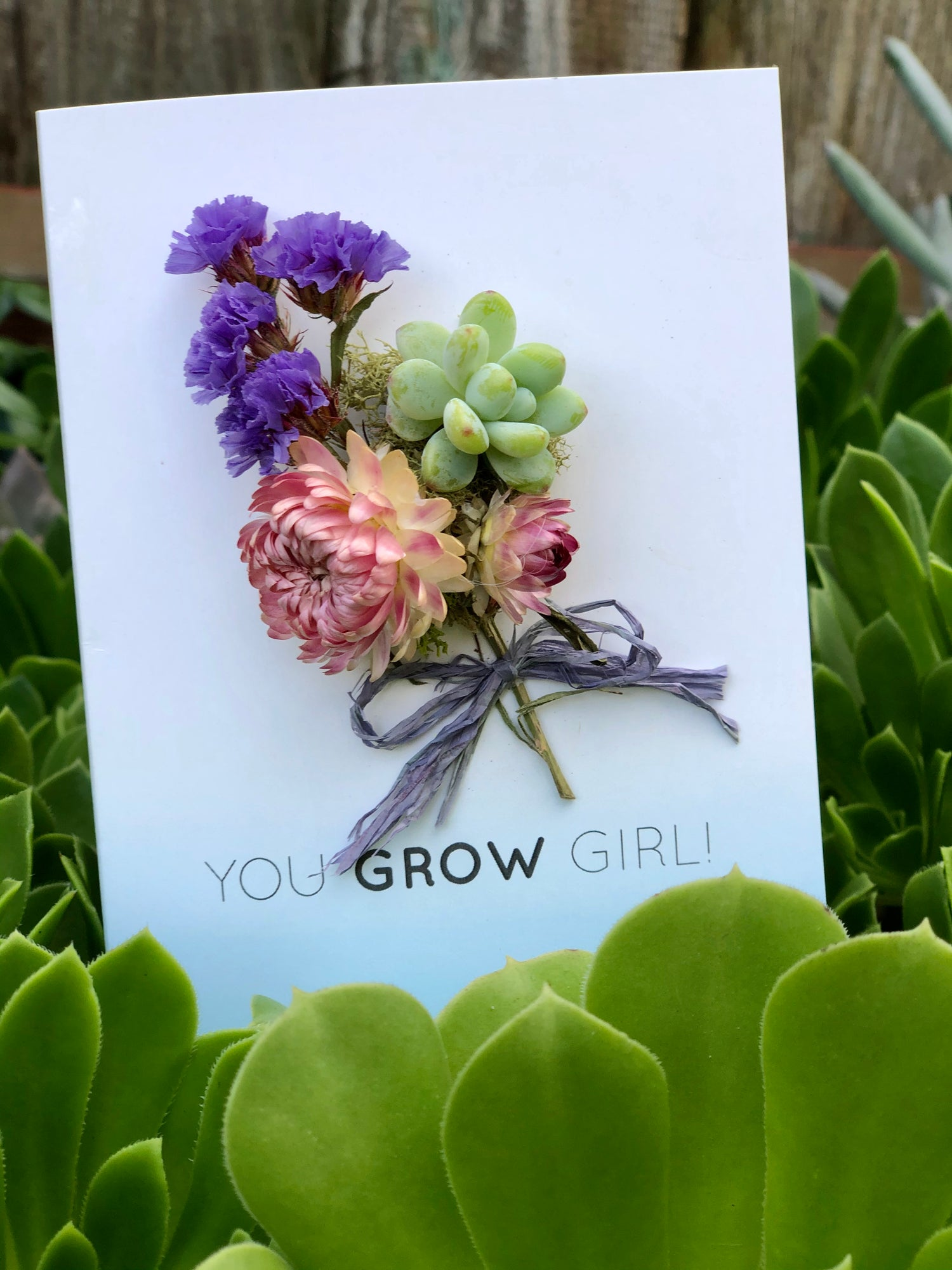 Image of You Grow Girl - living succulent card