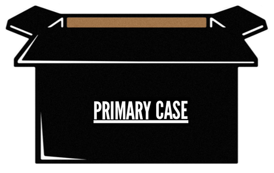 Image of <b>PRIMARY CASE</b>