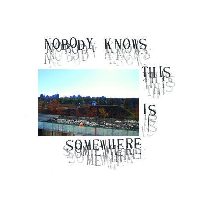 Image of V/A Nobody Knows This Is Somewhere LP