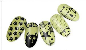 Image of Cats and Stars Metal Stamping Plate