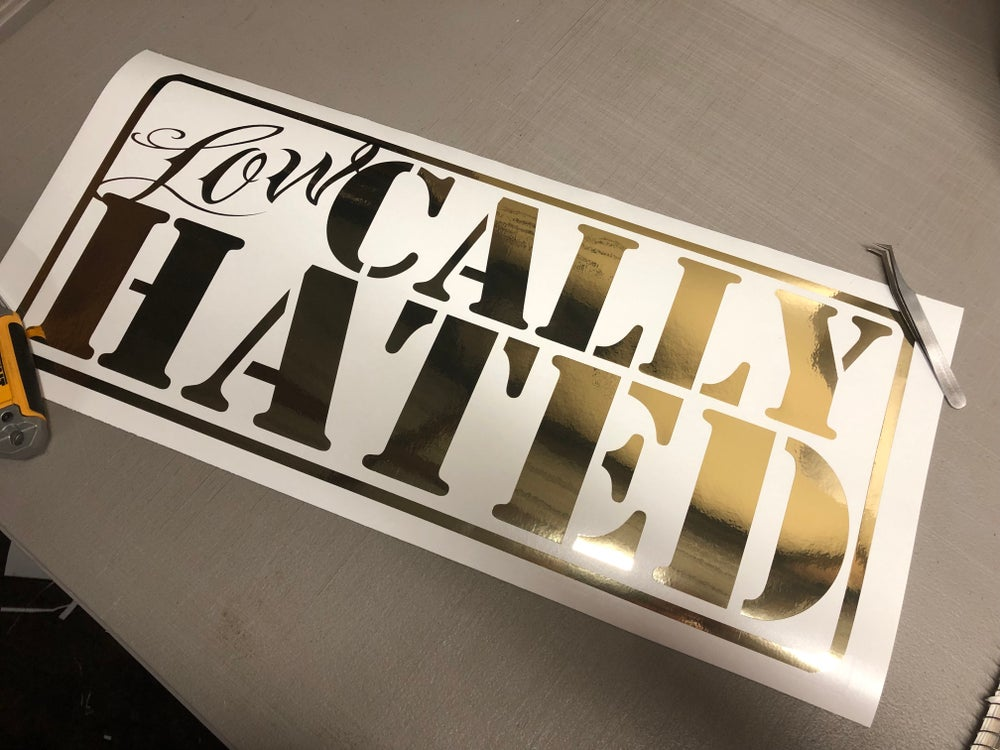 Image of 22x10 Lowcally Hated decal