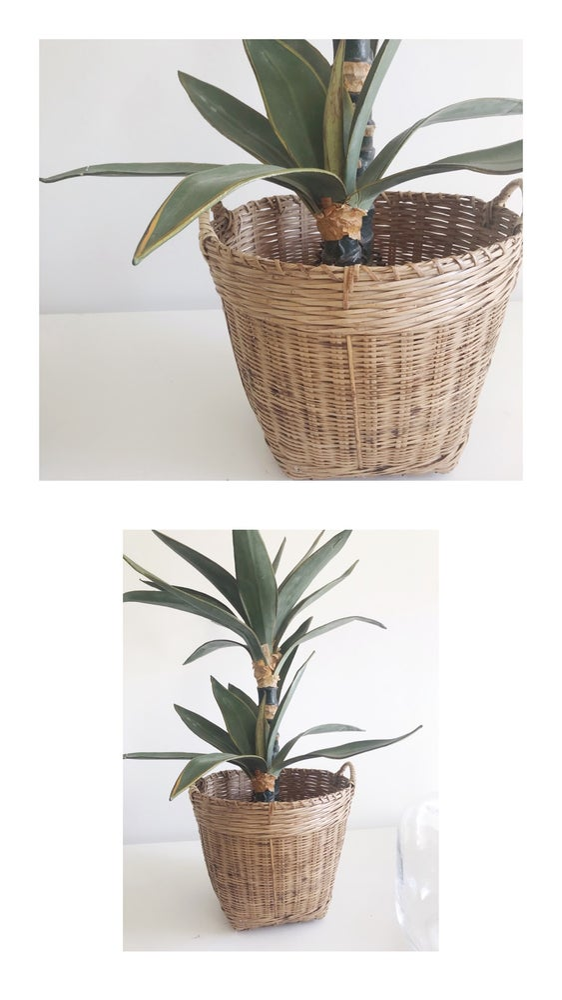 Image of Medium Basket