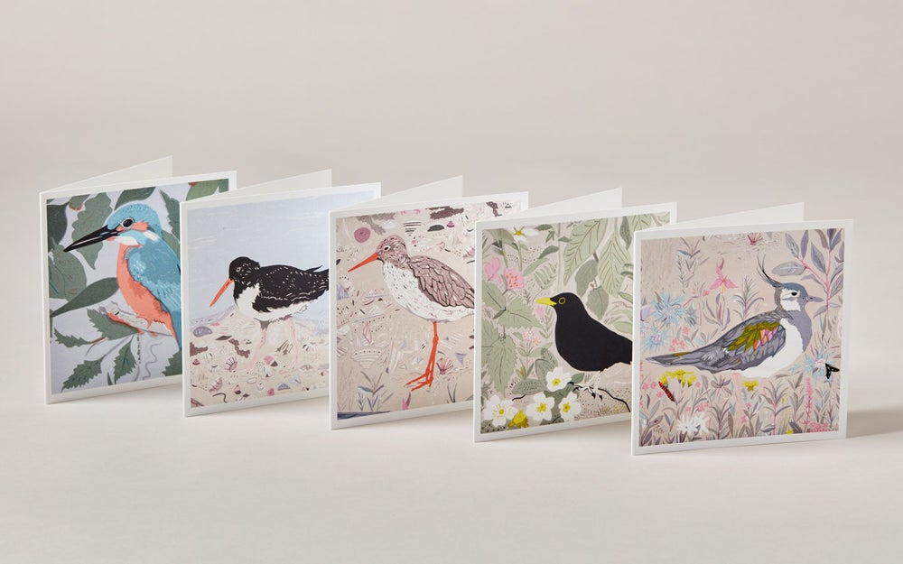 Image of Square Greetings cards ~ Birds