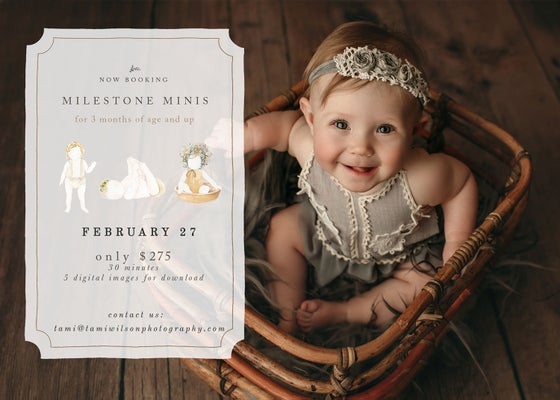 Image of Milestone Mini Sessions - February 27