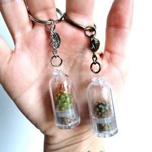 Image of Mini Cactus Plant Terrarium Keyring / Necklace