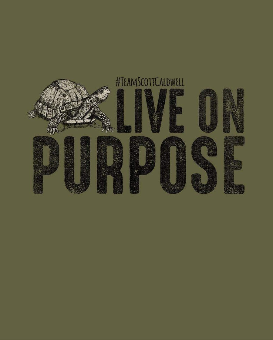 Image of Adult Live on Purpose Turtle Tank