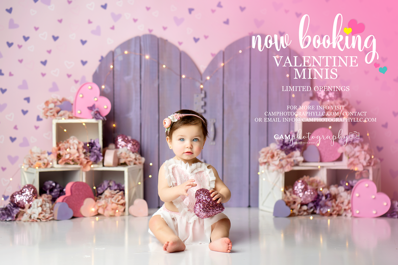 Image of *Click here* Valentine Mini Session 1/26 **RETAINER ONLY**