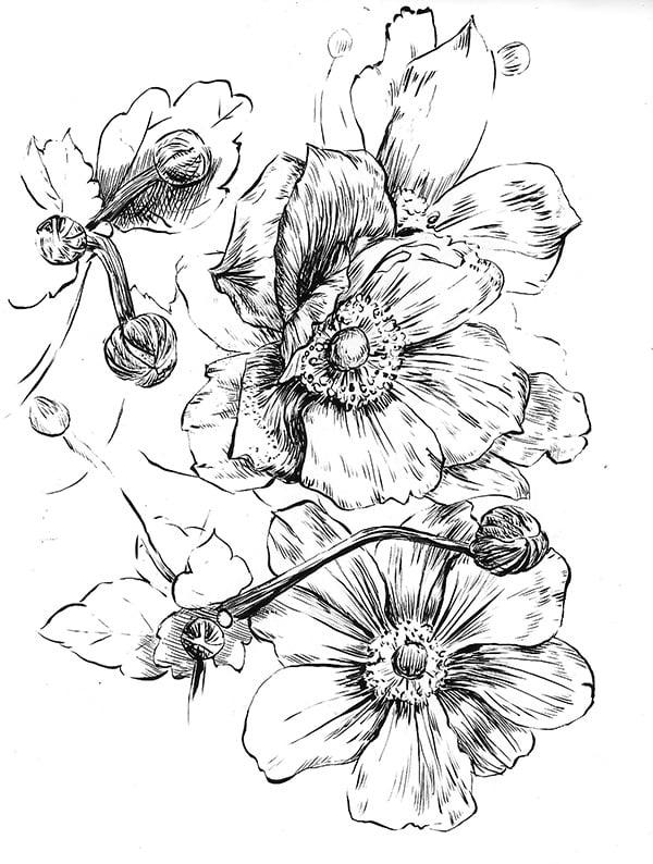 Image of Anemone Print