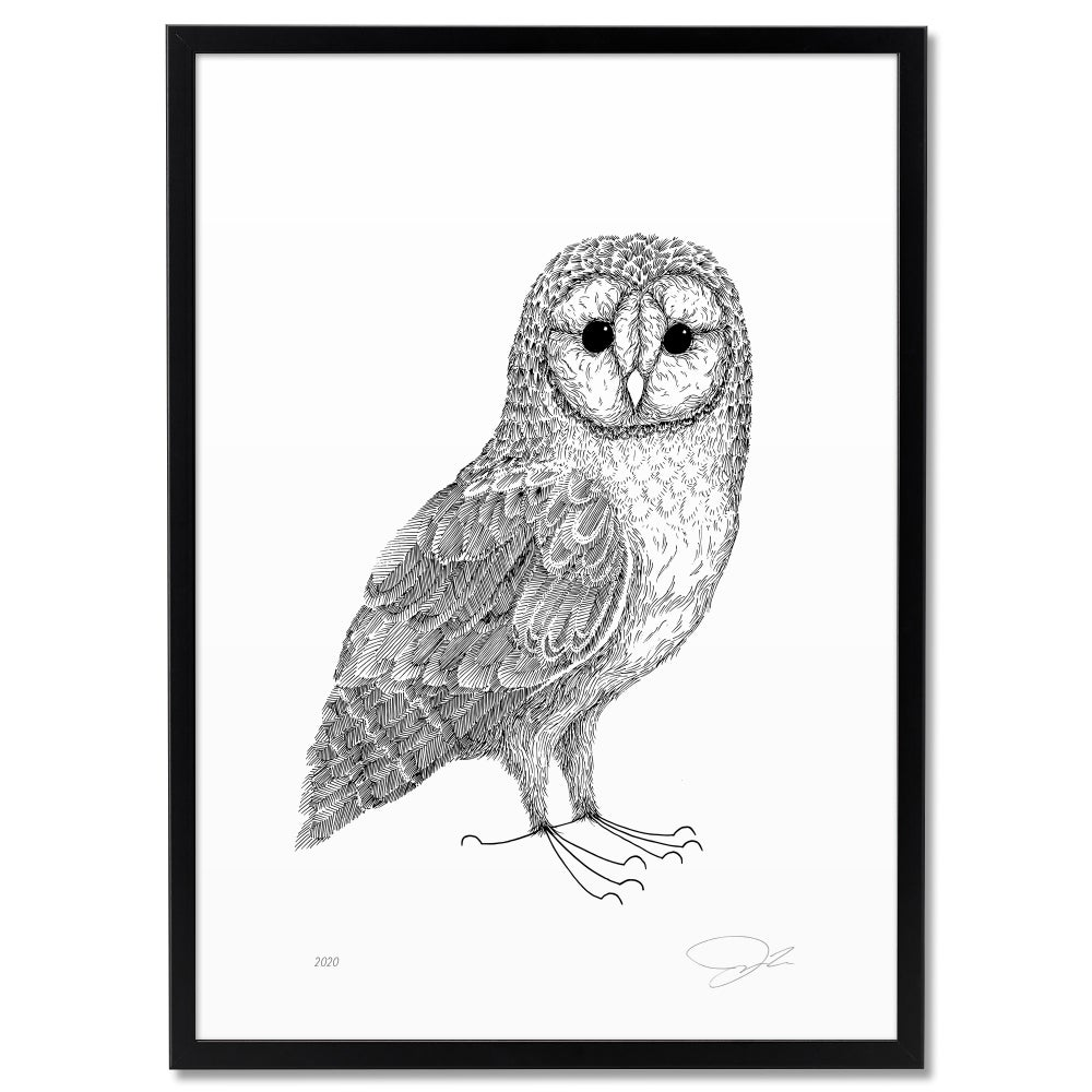 Image of Print: Barn Owl