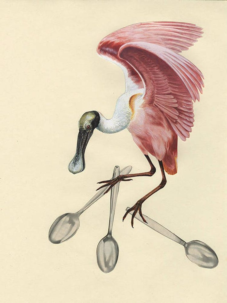 Image of A spoonbill steals the silver. Limited edition collage print.
