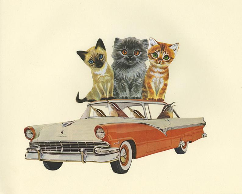 Image of A chime of Carolina wrens make off with the whole kitten caboodle. Collage print.