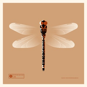 Image of Dragonfly Artprint Red Version