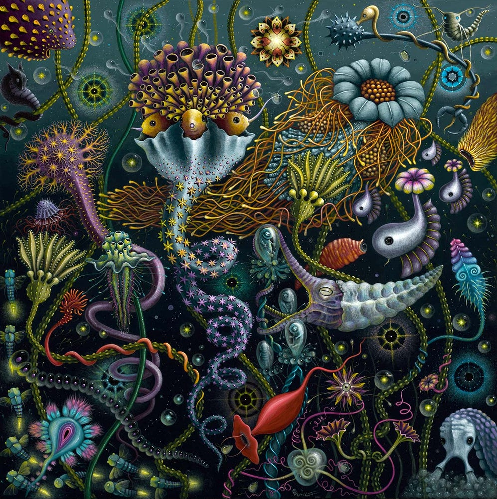 Image of SPACE PLANKTON II • Signed Limited Edition