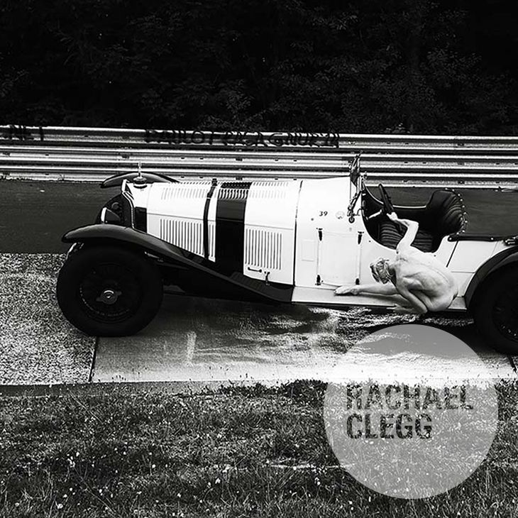 Image of 'Karussell - the Real White Elephant' Limited Edition Art Print
