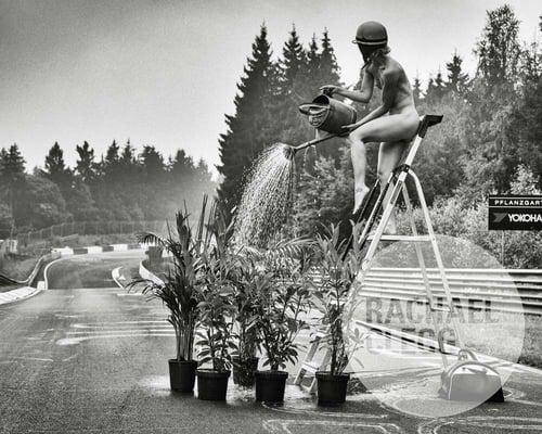 Image of 'Pflantzgarten' Limited Edition Art Print