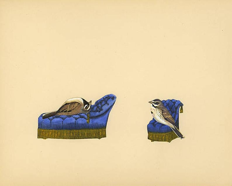 Image of Bird therapy. Limited edition collage print.