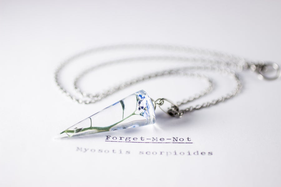 Image of Forget-Me-Not (Myosotis sylvatica) - Conical Pendant #1