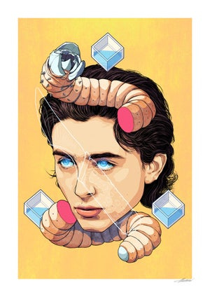 Image of Timothée Chalamet | Giclée Art Print