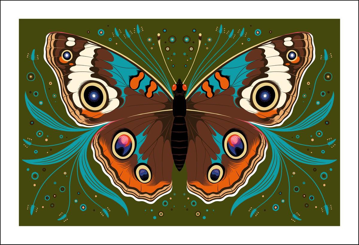 Image of Buckeye Butterfly Print