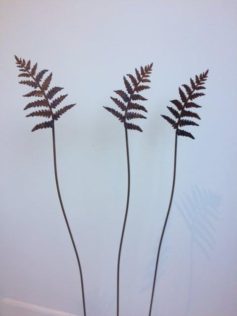 Mini Rusty Ferns
